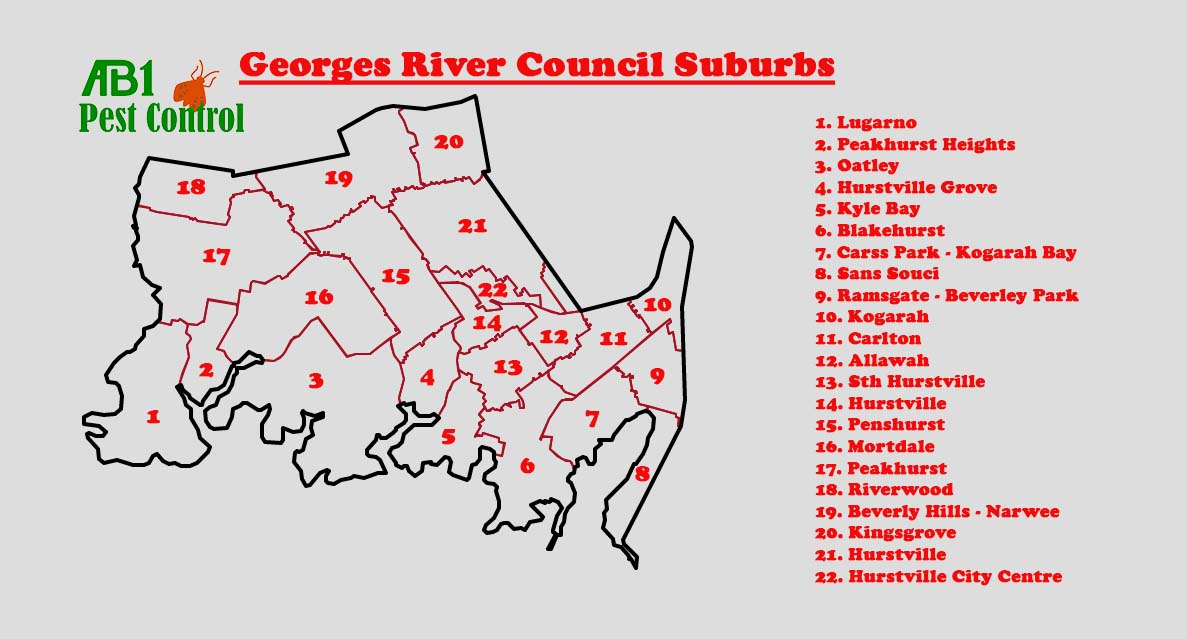 St George - Georges River Council Map