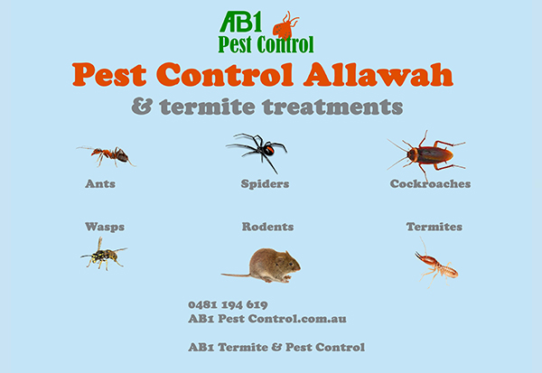 Allawah Pest Identification Card