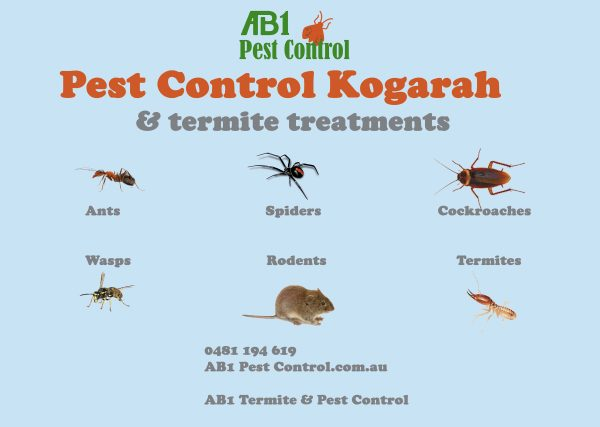 Kogarah Pest Identification Card