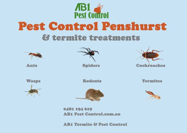Pest Identification Card Penshurst