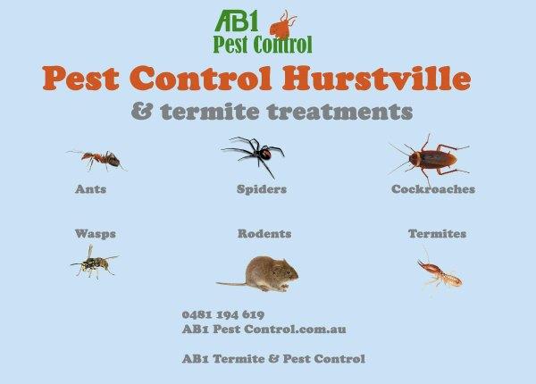 Pest Identification Card Hurstville