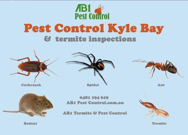 Kyle Bay Pest Identification Chart