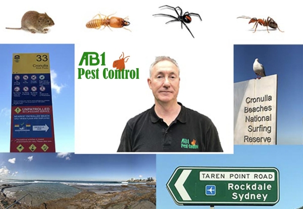Pest Control Sutherland