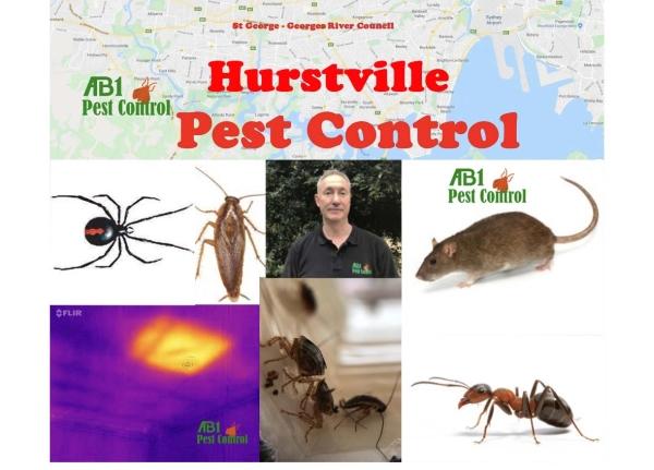 Pest Control Hurstville Welcome